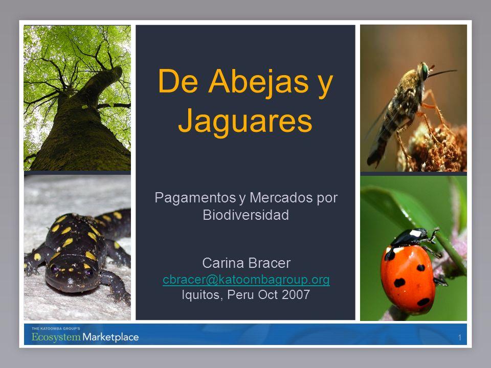 11 De Abejas y Jaguares Pagamentos y Mercados por Biodiversidad Carina Bracer cbracer@katoombagroup.org Iquitos, Peru Oct 2007 1