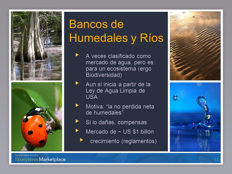 13 Bancos de Humedales y Ríos A veces clasificado como mercado de agua, pero es para un ecosistema (ergo Biodiversidad) Aun si inicia a partir de la L