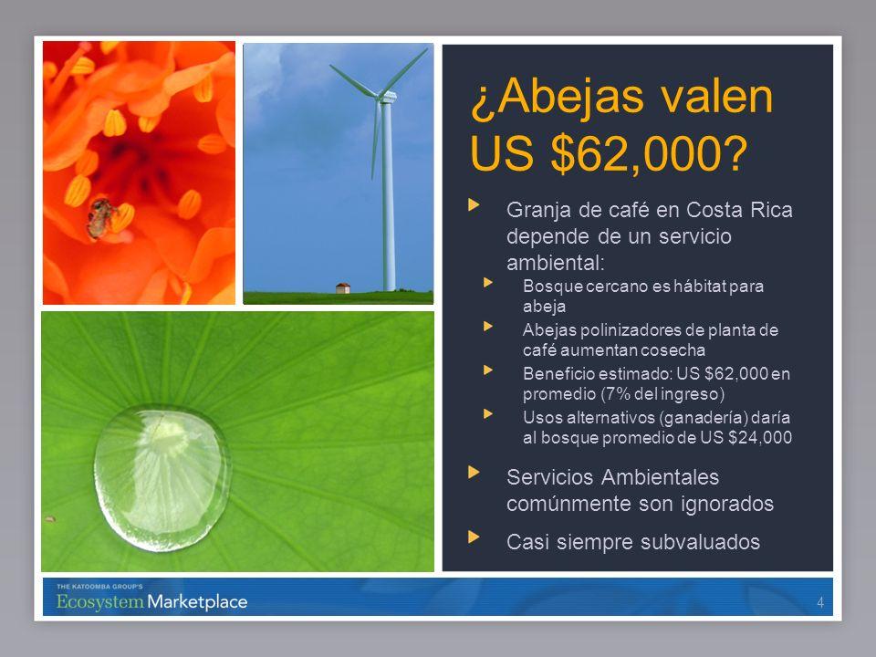 44 ¿Abejas valen US $62,000? Granja de café en Costa Rica depende de un servicio ambiental: Bosque cercano es hábitat para abeja Abejas polinizadores