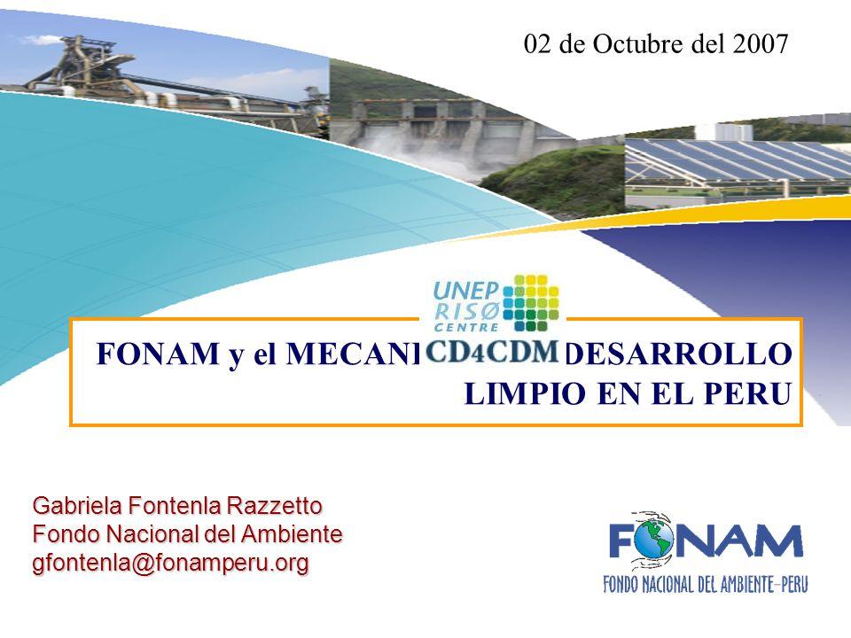 Gabriela Fontenla Razzetto Fondo Nacional del Ambiente gfontenla@fonamperu.org FONAM y el MECANISMO DE DESARROLLO LIMPIO EN EL PERU 02 de Octubre del 2007