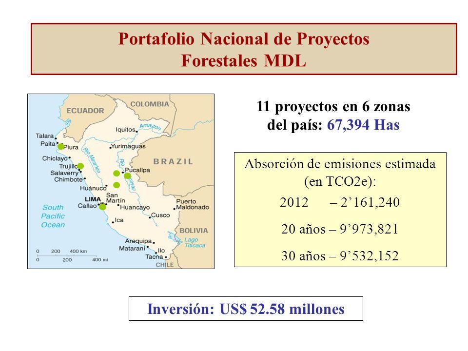 11 proyectos en 6 zonas del país: 67,394 Has Absorción de emisiones estimada (en TCO2e): 2012 – 2161,240 20 años – 9973,821 30 años – 9532,152 Inversión: US$ 52.58 millones Portafolio Nacional de Proyectos Forestales MDL