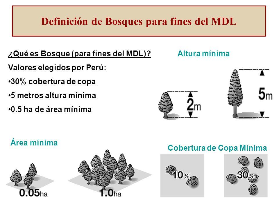 Cobertura de Copa Mínima Altura mínima Área mínima ¿Qué es Bosque (para fines del MDL).