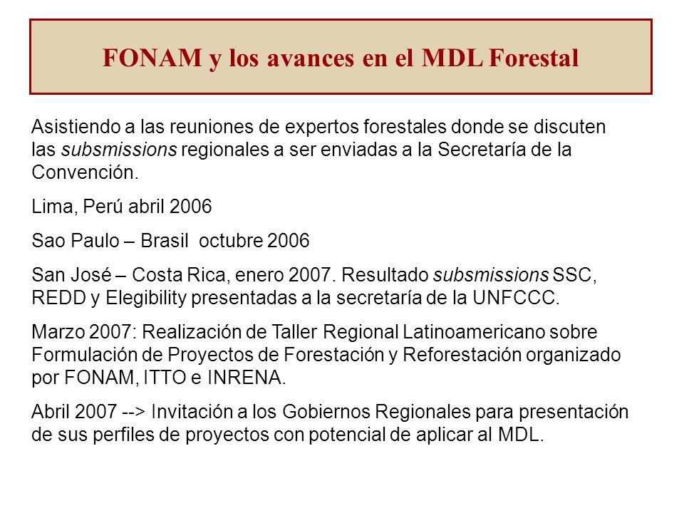 Asistiendo a las reuniones de expertos forestales donde se discuten las subsmissions regionales a ser enviadas a la Secretaría de la Convención.