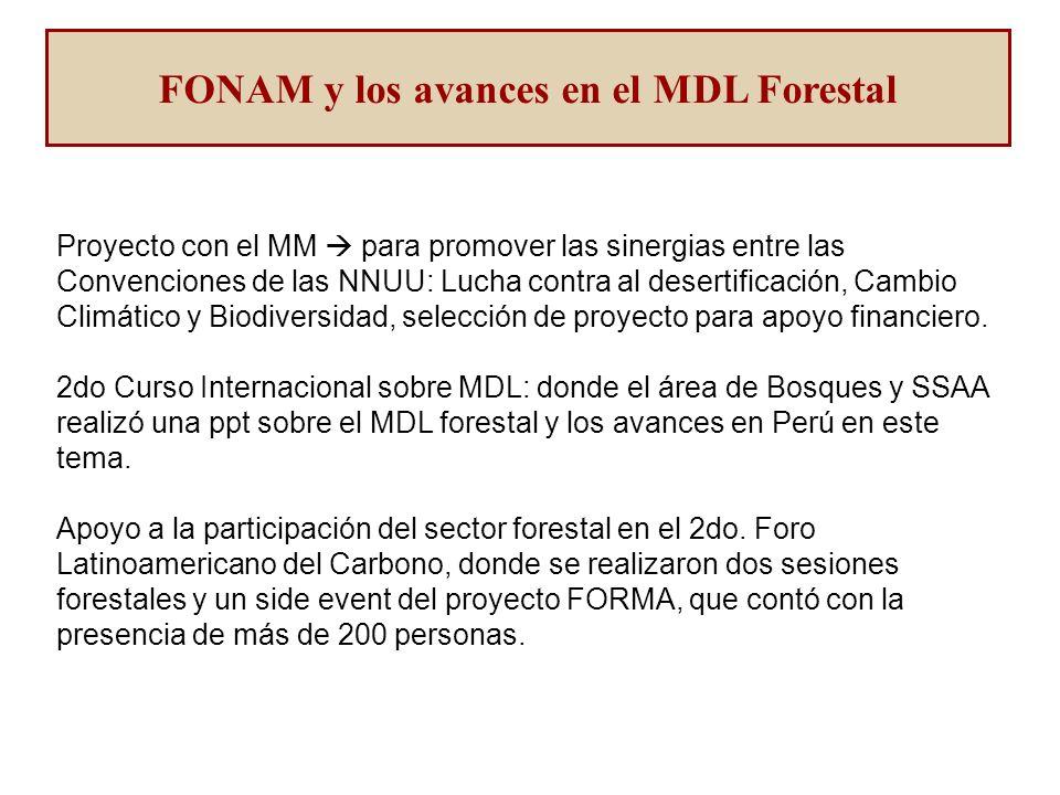 Proyecto con el MM para promover las sinergias entre las Convenciones de las NNUU: Lucha contra al desertificación, Cambio Climático y Biodiversidad, selección de proyecto para apoyo financiero.