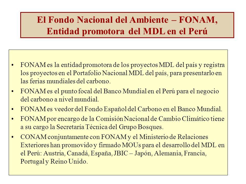 El Fondo Nacional del Ambiente – FONAM, Entidad promotora del MDL en el Perú FONAM es la entidad promotora de los proyectos MDL del país y registra los proyectos en el Portafolio Nacional MDL del país, para presentarlo en las ferias mundiales del carbono.