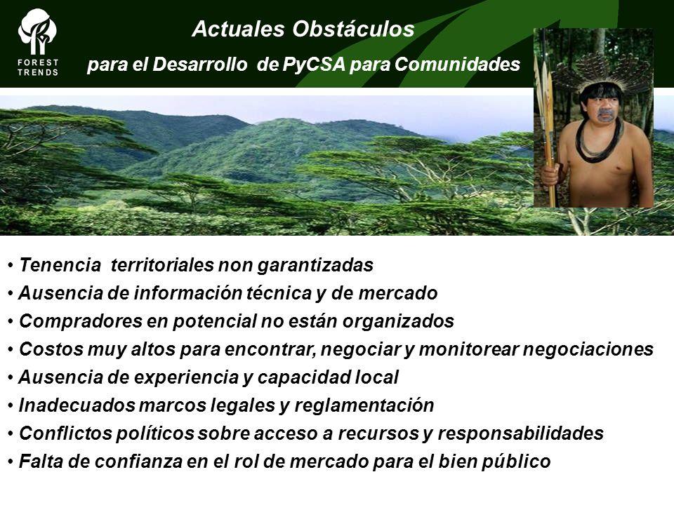 Actuales Obstáculos para el Desarrollo de PyCSA para Comunidades Tenencia territoriales non garantizadas Ausencia de información técnica y de mercado