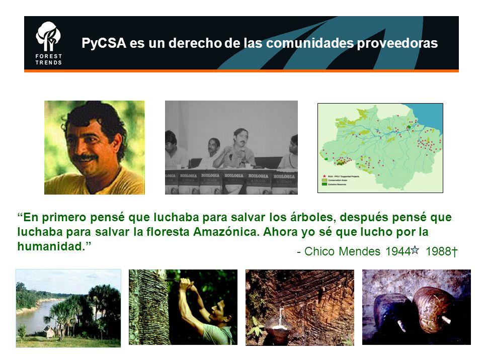 PyCSA es un derecho de las comunidades proveedoras En primero pensé que luchaba para salvar los árboles, después pensé que luchaba para salvar la flor