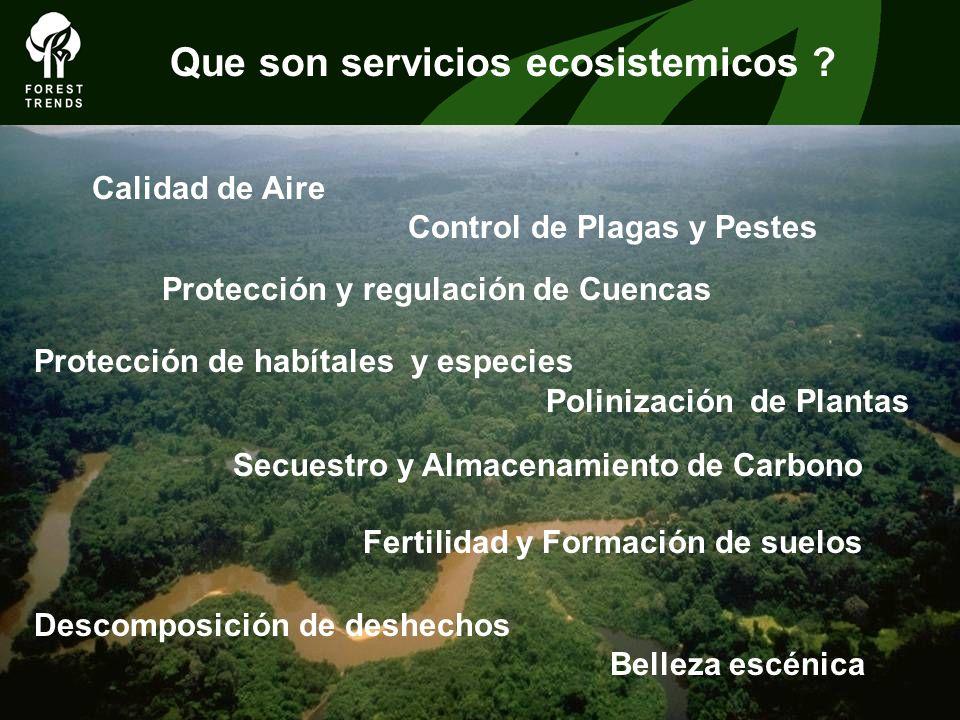Calidad de Aire Control de Plagas y Pestes Protección y regulación de Cuencas Protección de habítales y especies Polinización de Plantas Secuestro y A