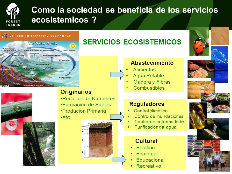 Como la sociedad se beneficia de los servicios ecosistemicos ? Originarios Reciclaje de Nutrientes Formación de Suelos Producion Primaria etc.… Abaste