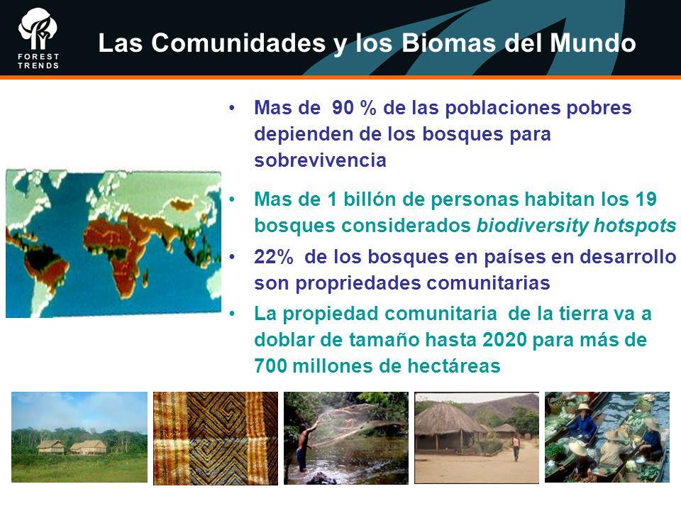Mas de 90 % de las poblaciones pobres depienden de los bosques para sobrevivencia Mas de 1 billón de personas habitan los 19 bosques considerados biod