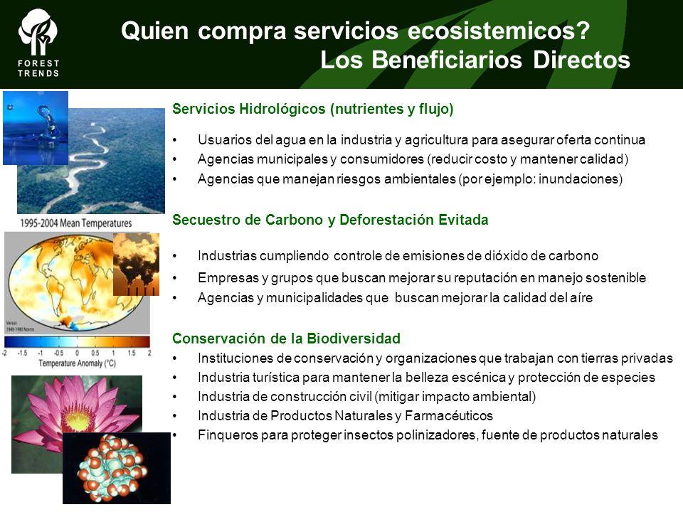 THE FOREST CLIMATE ALLIANCE Quien compra servicios ecosistemicos? Los Beneficiarios Directos Servicios Hidrológicos (nutrientes y flujo) Usuarios del