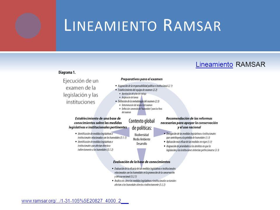 L INEAMIENTO R AMSAR www.ramsar.org/.../1-31-105%5E20827_4000_2 __ LineamientoLineamiento RAMSAR