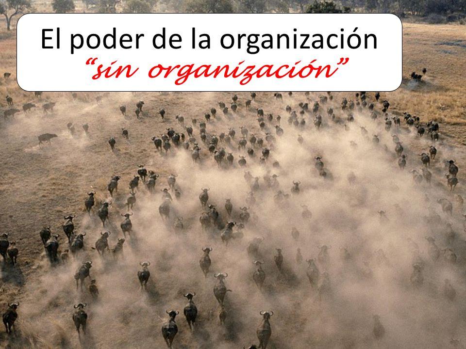 El poder de la organización sin organización