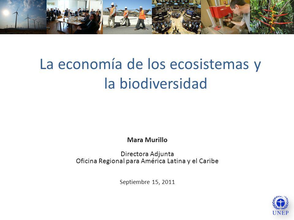 La economía de los ecosistemas y la biodiversidad Mara Murillo Directora Adjunta Oficina Regional para América Latina y el Caribe Septiembre 15, 2011