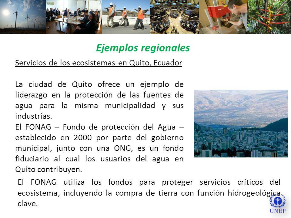 Ejemplos regionales Servicios de los ecosistemas en Quito, Ecuador La ciudad de Quito ofrece un ejemplo de liderazgo en la protección de las fuentes d