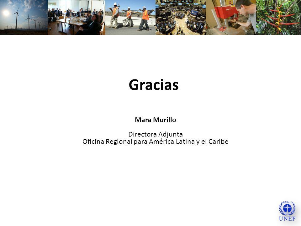Gracias Mara Murillo Directora Adjunta Oficina Regional para América Latina y el Caribe