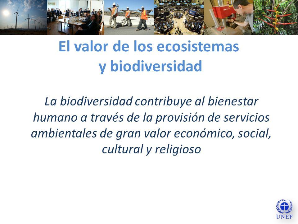 El valor de los ecosistemas y biodiversidad La biodiversidad contribuye al bienestar humano a través de la provisión de servicios ambientales de gran