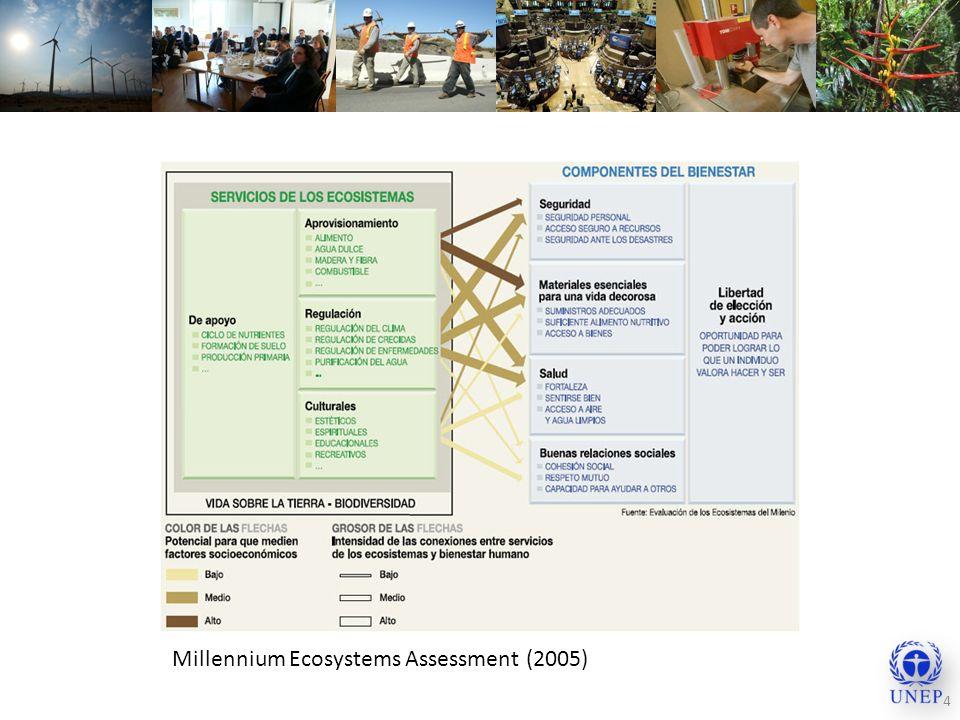 4 Millennium Ecosystems Assessment (2005)