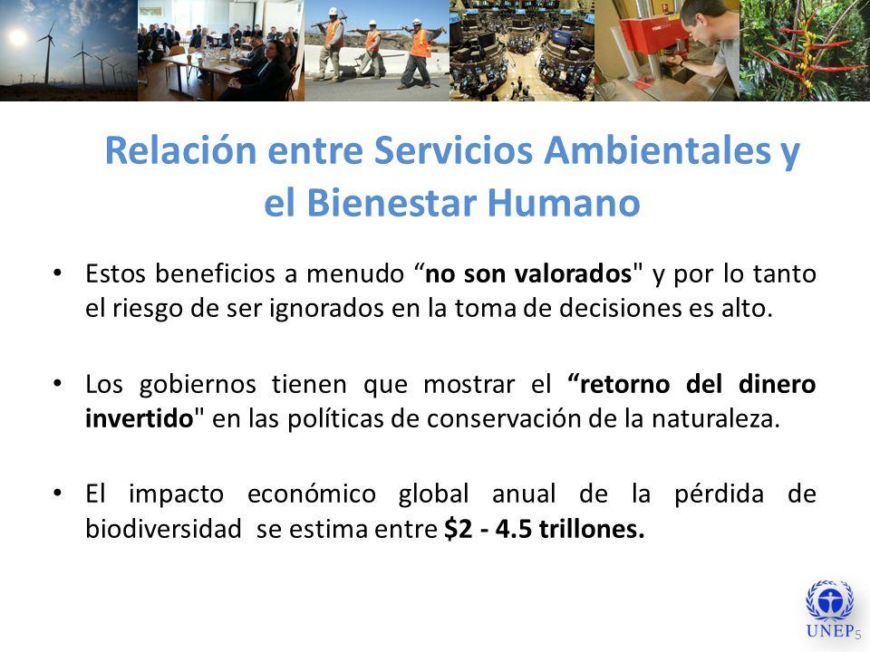 Relación entre Servicios Ambientales y el Bienestar Humano 5 Estos beneficios a menudo no son valorados