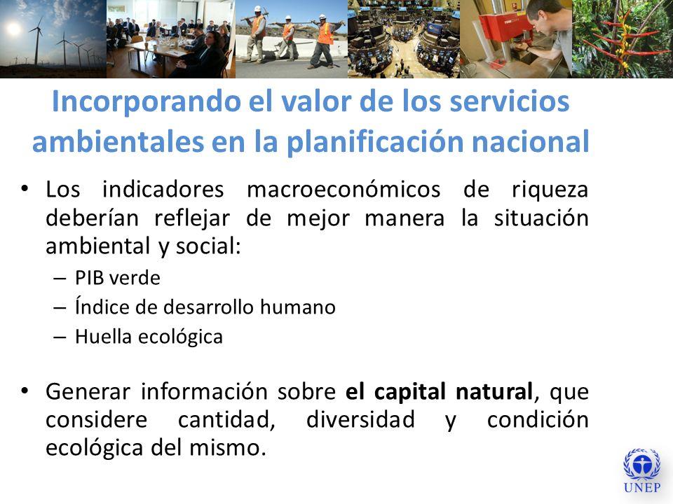Incorporando el valor de los servicios ambientales en la planificación nacional Los indicadores macroeconómicos de riqueza deberían reflejar de mejor