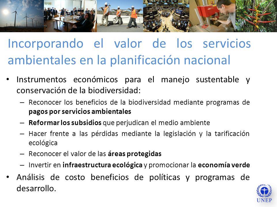 Incorporando el valor de los servicios ambientales en la planificación nacional Instrumentos económicos para el manejo sustentable y conservación de l