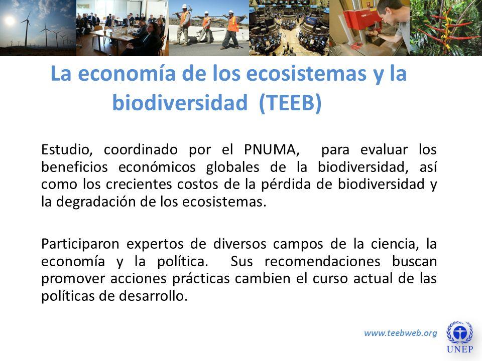 La economía de los ecosistemas y la biodiversidad (TEEB) Estudio, coordinado por el PNUMA, para evaluar los beneficios económicos globales de la biodi