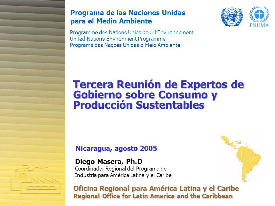 1 Programa de las Naciones Unidas para el Medio Ambiente Programme des Nations Unies pour lEnvironnement United Nations Environment Programme Programa
