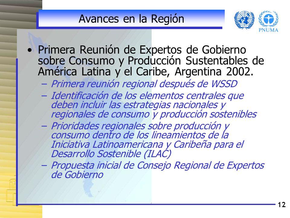 12 Avances en la Región Primera Reunión de Expertos de Gobierno sobre Consumo y Producción Sustentables de América Latina y el Caribe, Argentina 2002.