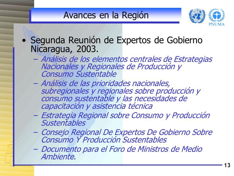 13 Avances en la Región Segunda Reunión de Expertos de Gobierno Nicaragua, 2003. –Análisis de los elementos centrales de Estrategias Nacionales y Regi