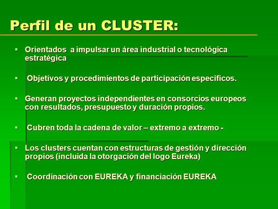 Perfil de un CLUSTER: Orientados a impulsar un área industrial o tecnológica estratégica Orientados a impulsar un área industrial o tecnológica estratégica Objetivos y procedimientos de participación específicos.