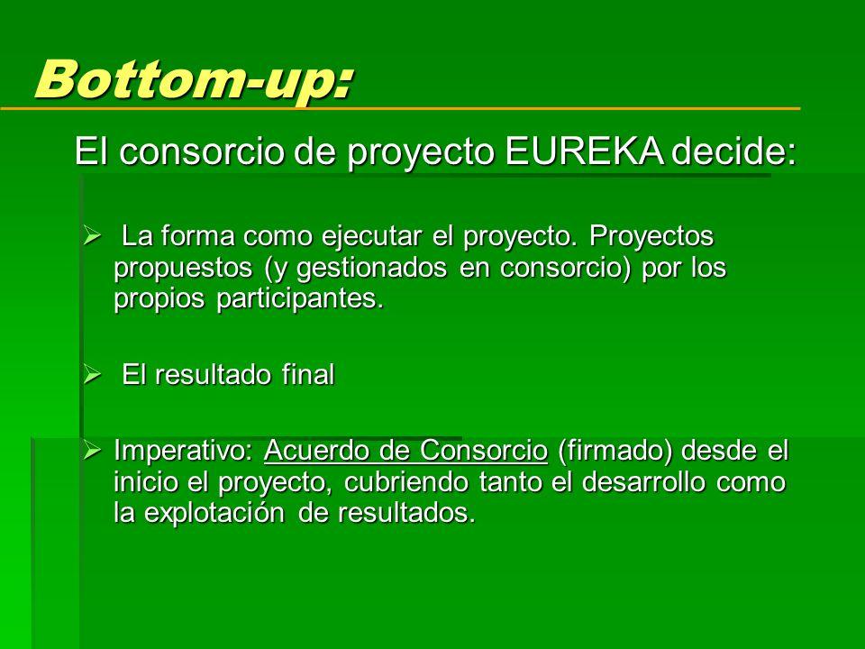 Bottom-up: La forma como ejecutar el proyecto.