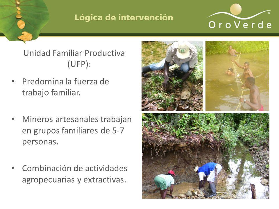 Lógica de intervención Unidad Familiar Productiva (UFP): Predomina la fuerza de trabajo familiar. Mineros artesanales trabajan en grupos familiares de