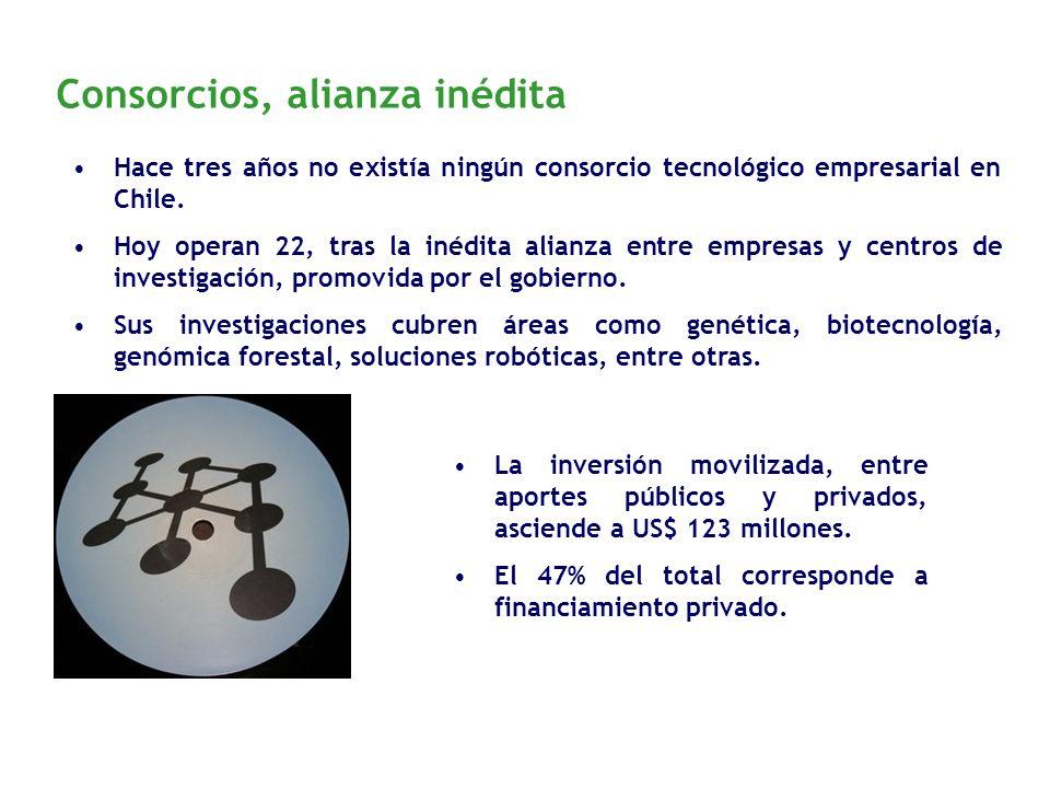 Consorcios, alianza inédita Hace tres años no existía ningún consorcio tecnológico empresarial en Chile. Hoy operan 22, tras la inédita alianza entre
