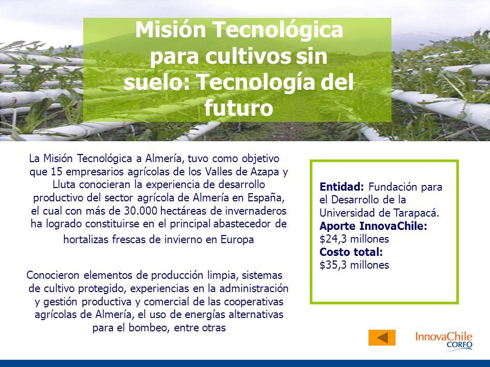 La Misión Tecnológica a Almería, tuvo como objetivo que 15 empresarios agrícolas de los Valles de Azapa y Lluta conocieran la experiencia de desarroll