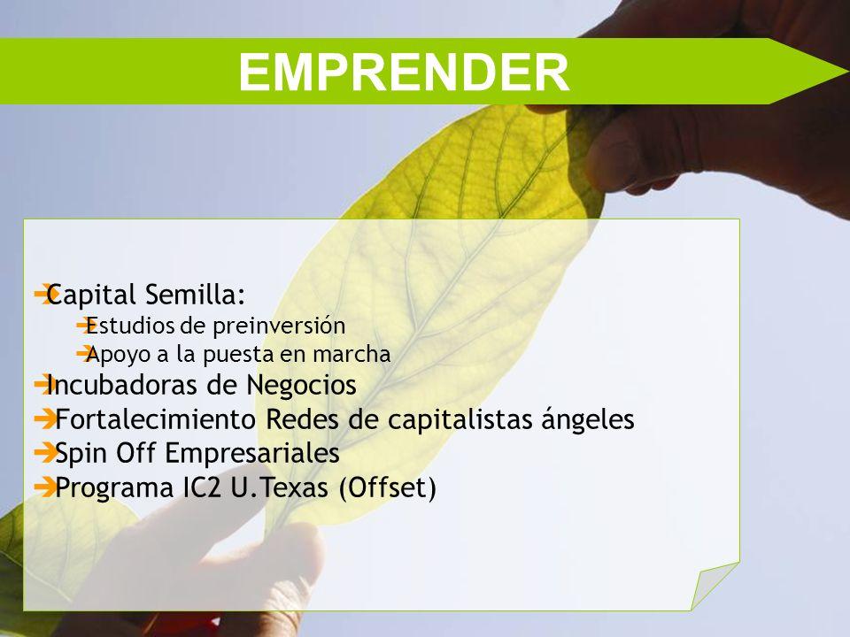 EMPRENDER Capital Semilla: Estudios de preinversión Apoyo a la puesta en marcha Incubadoras de Negocios Fortalecimiento Redes de capitalistas ángeles