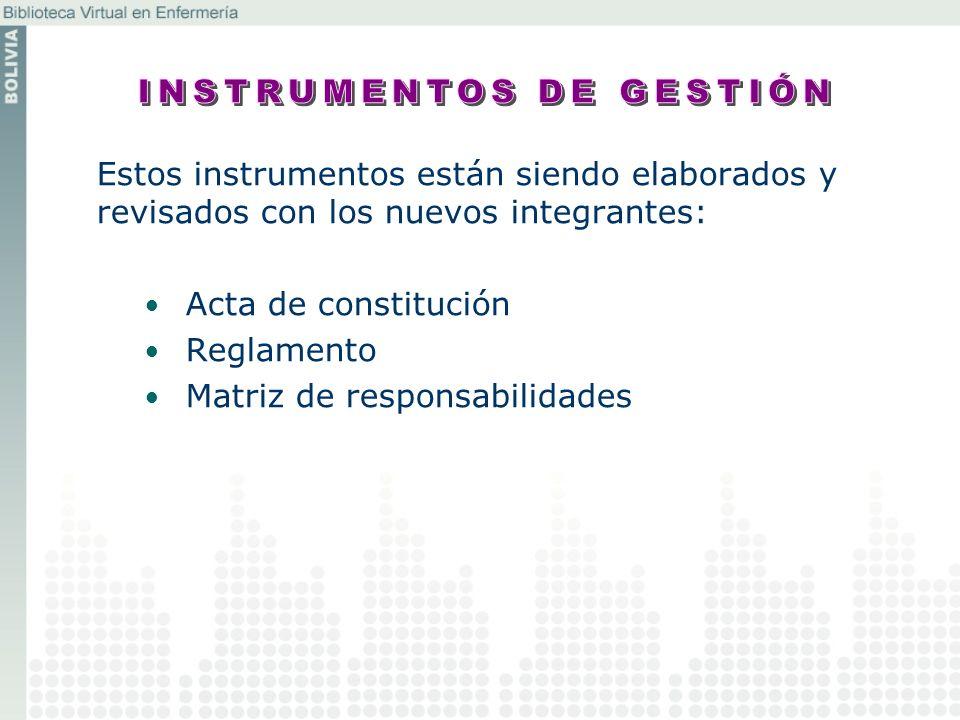 Estos instrumentos están siendo elaborados y revisados con los nuevos integrantes: Acta de constitución Reglamento Matriz de responsabilidades