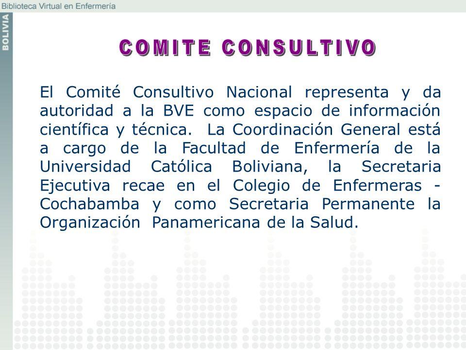 El Comité Consultivo Nacional representa y da autoridad a la BVE como espacio de información científica y técnica. La Coordinación General está a carg