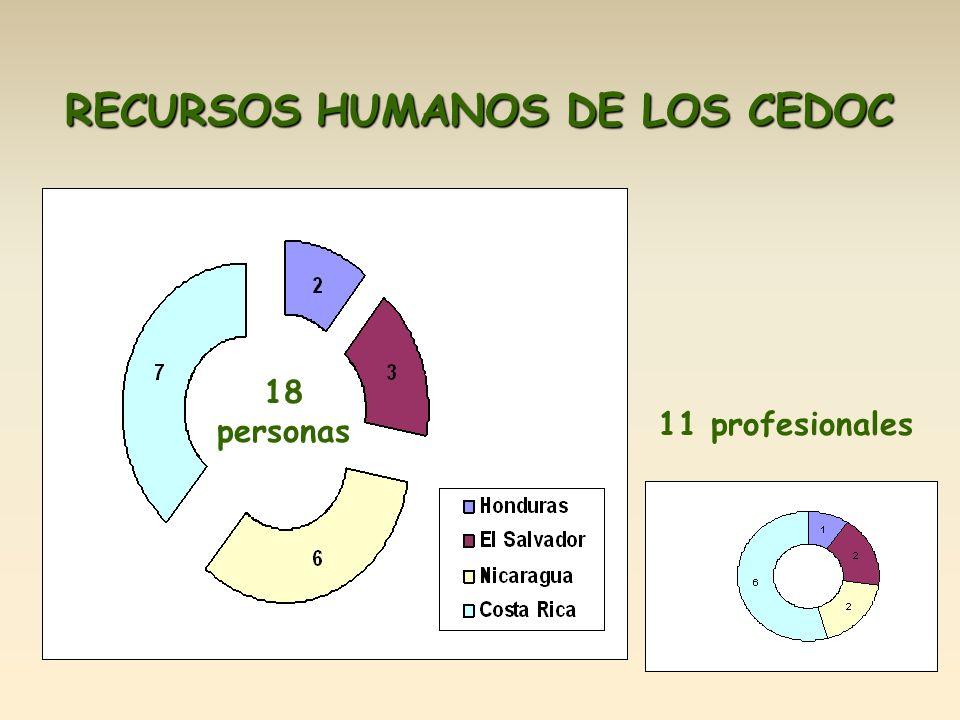 RECURSOS HUMANOS DE LOS CEDOC 18 personas 11 profesionales
