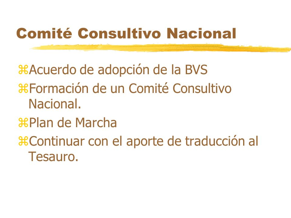 Comité Consultivo Nacional zAcuerdo de adopción de la BVS zFormación de un Comité Consultivo Nacional. zPlan de Marcha zContinuar con el aporte de tra