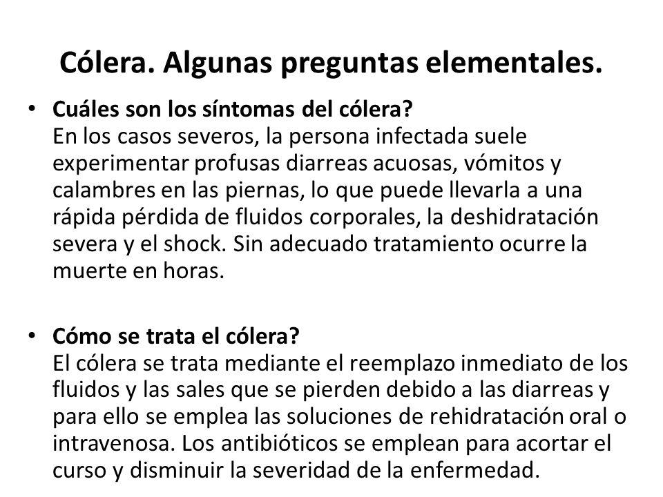 Cólera. Algunas preguntas elementales. Cuáles son los síntomas del cólera? En los casos severos, la persona infectada suele experimentar profusas diar