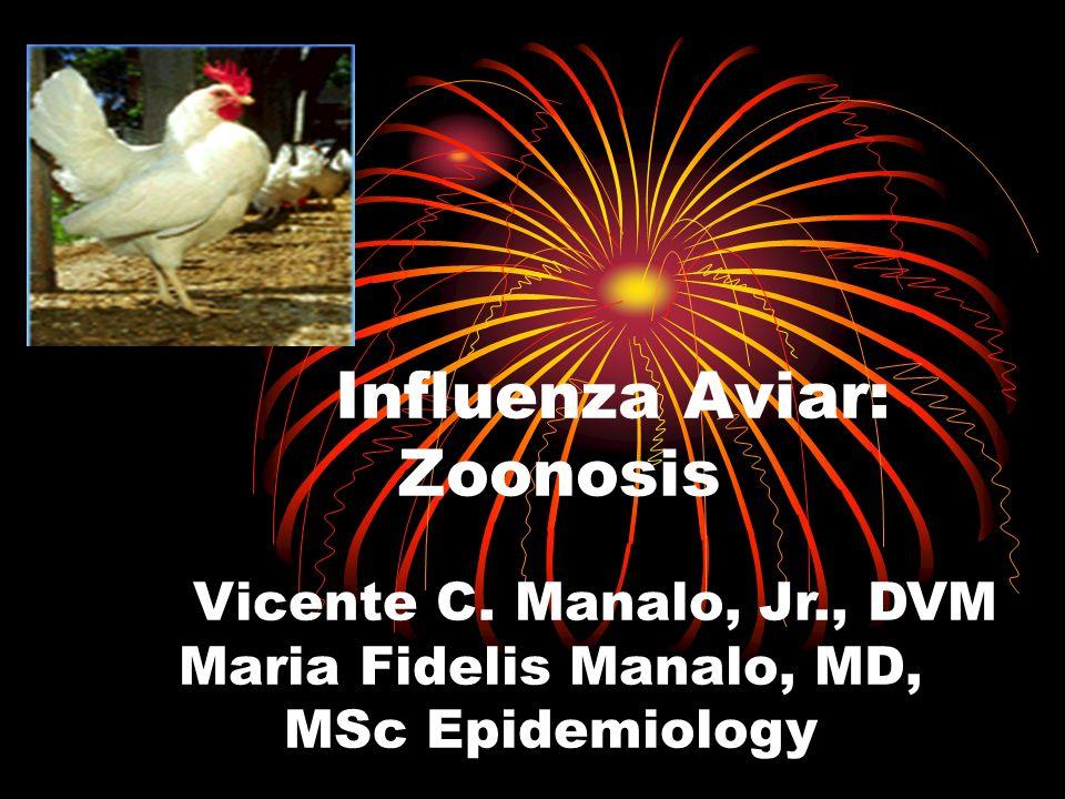 Influenza Aviar: Zoonosis Vicente C. Manalo, Jr., DVM Maria Fidelis Manalo, MD, MSc Epidemiology