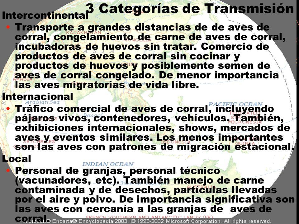 3 Categorías de Transmisión Intercontinental Transporte a grandes distancias de de aves de corral, congelamiento de carne de aves de corral, incubador