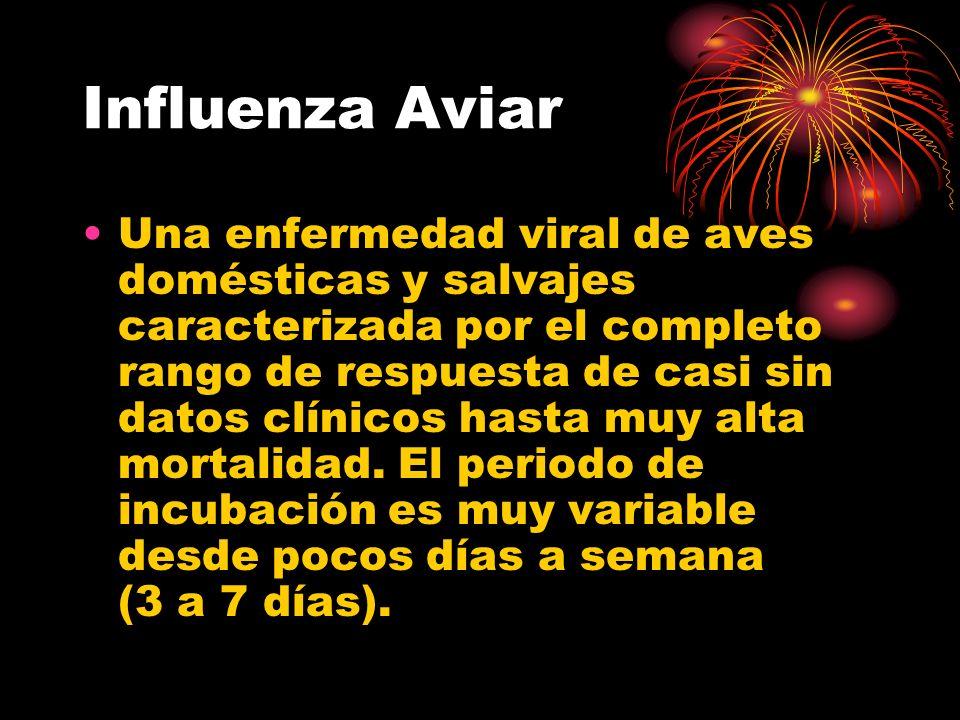 Influenza Aviar Una enfermedad viral de aves domésticas y salvajes caracterizada por el completo rango de respuesta de casi sin datos clínicos hasta m