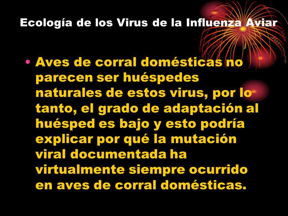 Ecología de los Virus de la Influenza Aviar Aves de corral domésticas no parecen ser huéspedes naturales de estos virus, por lo tanto, el grado de ada