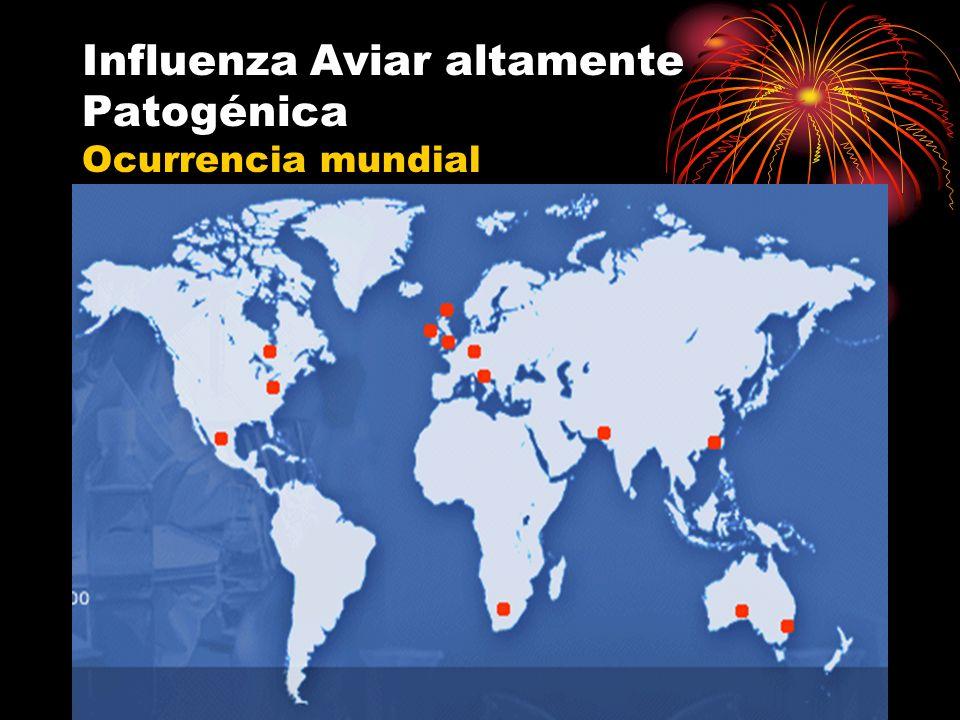 Influenza Aviar altamente Patogénica Ocurrencia mundial