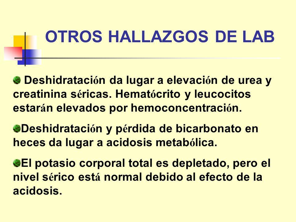 OTROS HALLAZGOS DE LAB Deshidrataci ó n da lugar a elevaci ó n de urea y creatinina s é ricas. Hemat ó crito y leucocitos estar á n elevados por hemoc