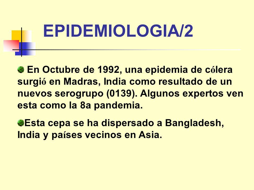 En Octubre de 1992, una epidemia de c ó lera surgi ó en Madras, India como resultado de un nuevos serogrupo (0139). Algunos expertos ven esta como la