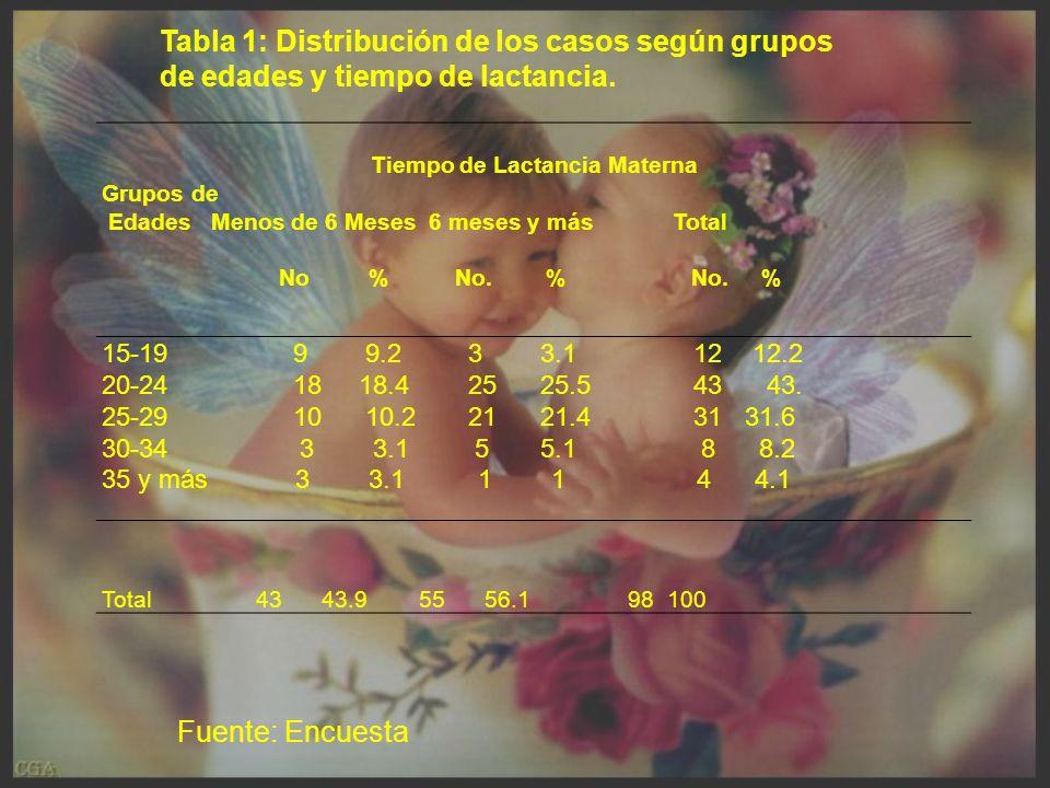 Tiempo de Lactancia Materna Grupos de Edades Menos de 6 Meses 6 meses y más Total No % No.