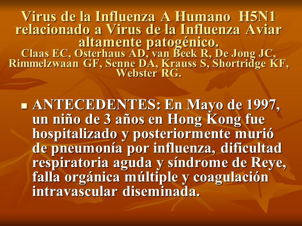 Virus de la Influenza A Humano H5N1 relacionado a Virus de la Influenza Aviar altamente patogénico. Claas EC, Osterhaus AD, van Beek R, De Jong JC, Ri