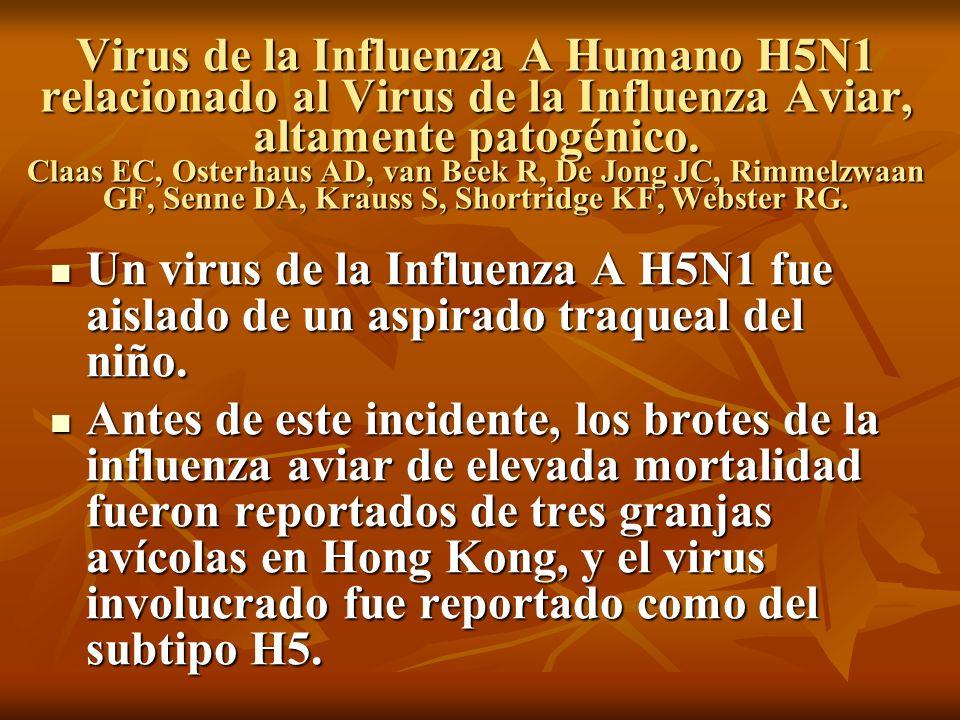 Virus de la Influenza A Humano H5N1 relacionado al Virus de la Influenza Aviar, altamente patogénico. Claas EC, Osterhaus AD, van Beek R, De Jong JC,
